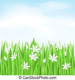 bloemen, gras, groen wit
