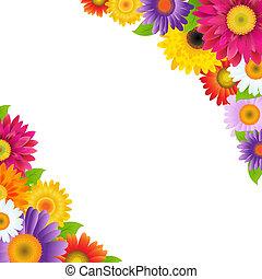 bloemen, grens, kleurrijke, gerbers