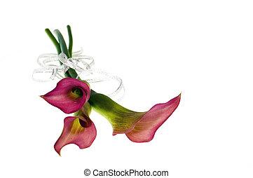 bloemen, met, lint