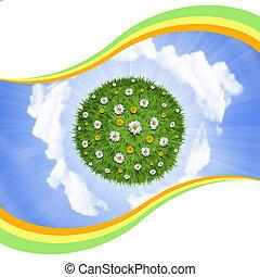 bloemen, natuur, hemel, planeet, groene achtergrond, gras