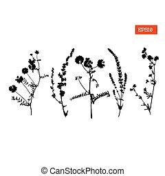 bloemen, wild, set, vector, silhouettes