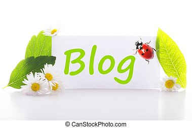 blog concept with word on nature still life