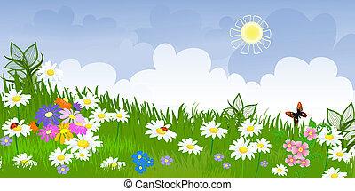 blomma, äng, panorama
