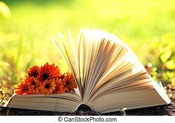 blomma, öppna, bok, Gräs