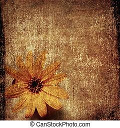 blomma,  grunge, bakgrund, gul
