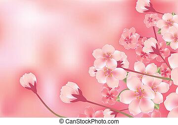 blomma, körsbär, abstrakt, lyxvara
