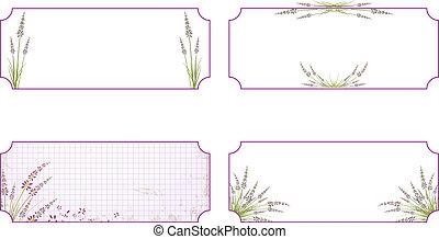 blomma, sätta, lavendel, etikett
