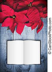 blomma, Trä, Utrymme, bakgrund, bok, Julstjärna, avskrift, öppna, jul, röd