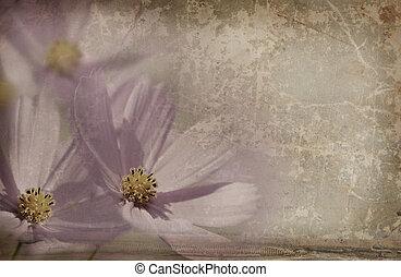 blommig, årgång, bakgrund