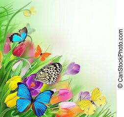 blommig, bakgrund, med, exotisk, fjärilar