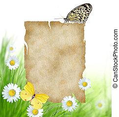 blommig, bakgrund, med, tom, papper