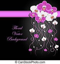 blommig, bakgrund., vektor