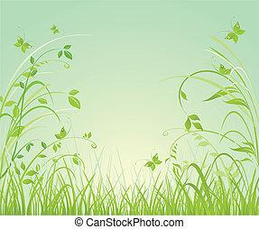blommig, fjäder, bakgrund