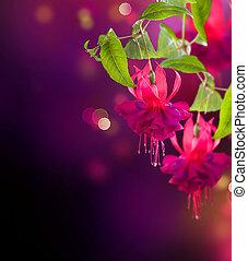 blommig, flowers., fuchsia, abstrakt, bakgrund
