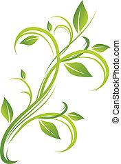 blommig, grön, design