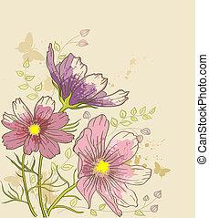 blommig, kosmos, blomningen, bakgrund