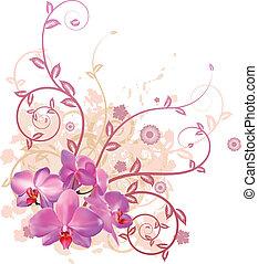 blommig, kylig, bakgrund, orkidé
