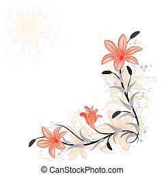 blommig, lilja, vektor, formge grundämne