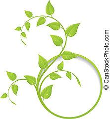 blommig, ram, grön