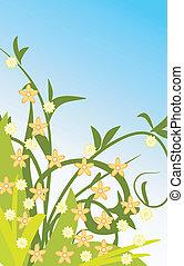 blommig, sommar, design, bakgrund