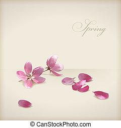 blommig, vektor, körsbär blomstra, blomningen, fjäder,...