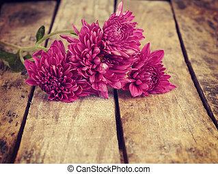 blomningen, gammal, retro, årgång, stil