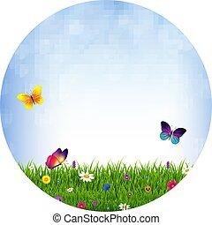 blomningen, gräs, boll
