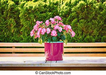 blomningen, in, den, blomster kruka