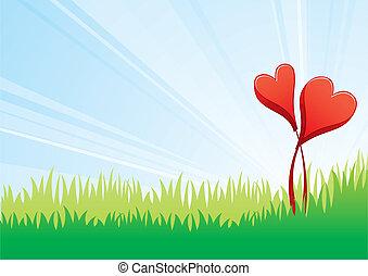 blomningen, kärlek
