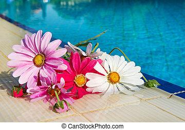 blomningen, nära, badbassäng