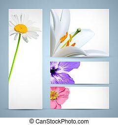 blomst, brochure, template., baggrund, konstruktion