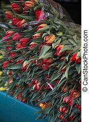 blomst, gruppe, paris, tulipaner, store, marked