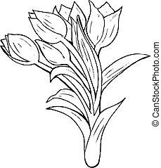 blomst, illustration