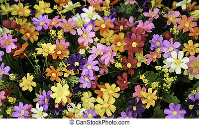 blomster, blandet, bouquet, by, baggrund