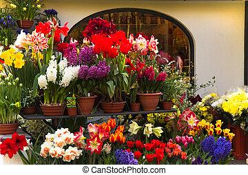 blomsterhandler, shop, hos, forår blomstrer