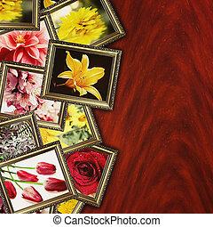 Blomstrar,  retro, bakgrund
