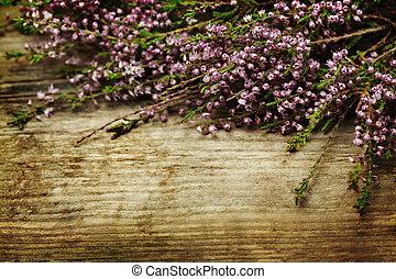 Blomstrar,  retro, bakgrund, Designa