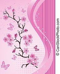 blomstre, kirsebær, japansk