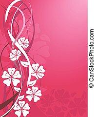 blomstre, sakura