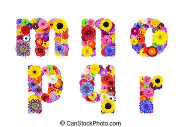 blomstrede, alfabet, isoleret, på hvide, -, breve, m, n, o,...