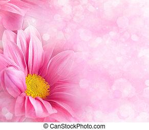 blomstret konstruktion, abstrakt, baggrunde, din