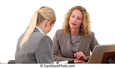 Blond business women having a meeting at a desk