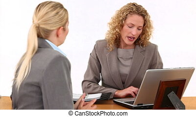 Blond businesswomen having a meeting