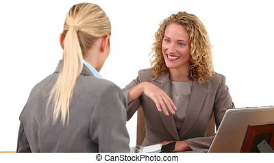 Blond businesswomen having a meeting at a desk