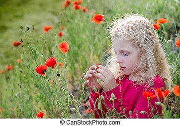 blond child with poppy flowers