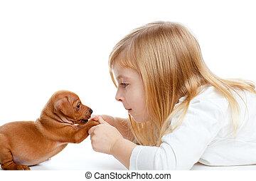Blond children girl with dog puppy mini pinscher - Blond...