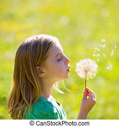 Blond kid girl blowing dandelion flower in green meadow...