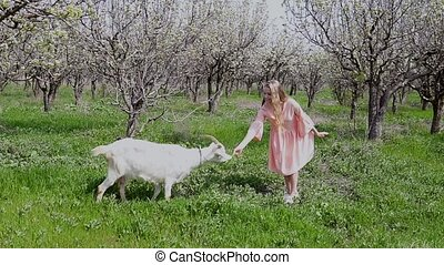 Blonde in pink dress feeds the grass a goat
