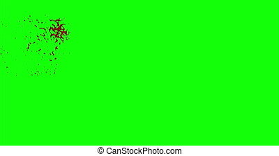 Blood Burst Slow Motion (Green Screen) 14