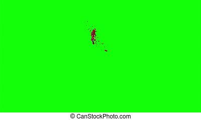 Blood Burst Slow Motion (Green Screen) 104